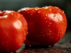 kaloryczność pomidora
